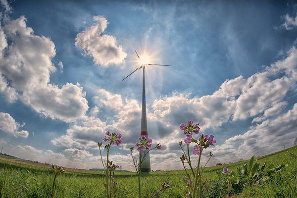 La sostenibilidad y el Planeta